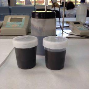 Caracterización de lodos de depuradora enero 2016 #3 / Characterization of sewage sludge January 2016 #3