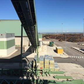 Visita a Planta Biomasa-3