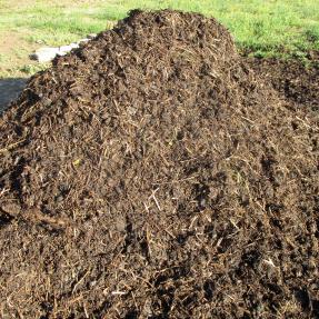 Pila de compost / compost pile