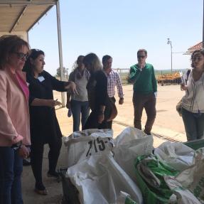 3ª visita seguimiento/3rd visit monitoring -  Campos de Ensayo 1/Trial Fields 1 - CTAEX 10 may 2018