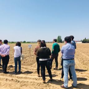 3ª visita seguimiento/3rd visit monitoring -  Campos de Ensayo 2/Trial Fields 2 - CTAEX 10 may 2018