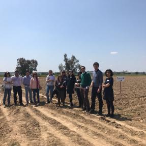 3ª visita seguimiento/3rd visit monitoring -  Campos de Ensayo 3/Trial Fields 3 - CTAEX 10 may 2018