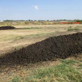 Compost maduro / Mature compost