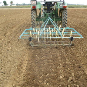 Siembra y abonado de fondo / Seeding and basal dressing - Oct18