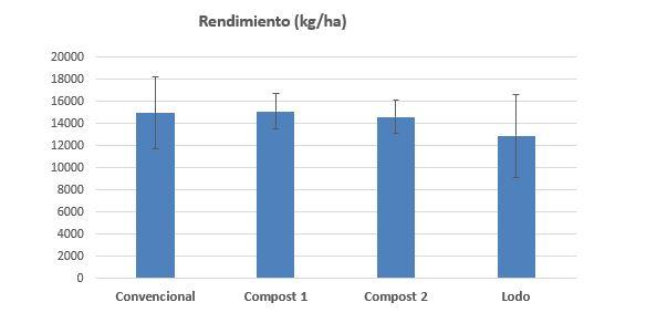 19 03 eficiencia en maiz1