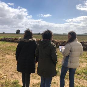 5ª visita seguimiento / 5th visit monitoring 02.03.2019 - Campos de Ensayo / Trial Fields